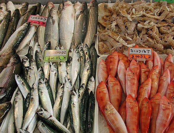 Fish Market Angling Sea Marine Fishing Water Aquat