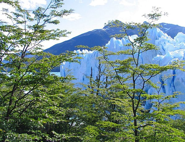 Glacier Landscapes Countryside Nature Argentina Na
