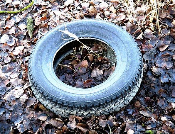 Auto Tires Landscapes Leftover Nature Mature Age W