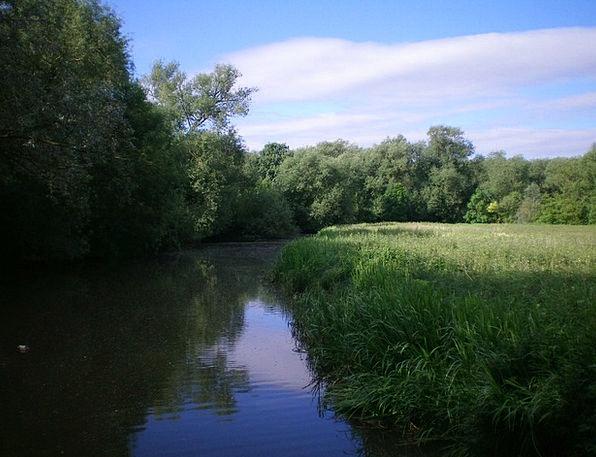 Oxford Landscapes Nature River Stream England Natu