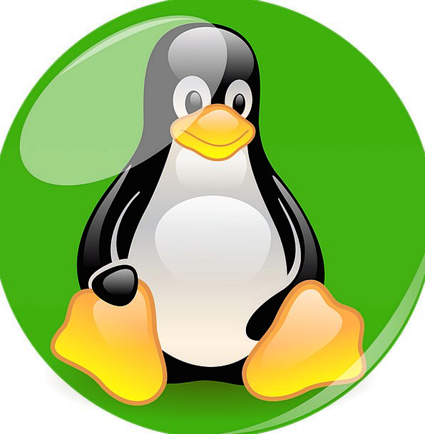 Penguin Mascot Symbol Linux Cartoon Character Fig