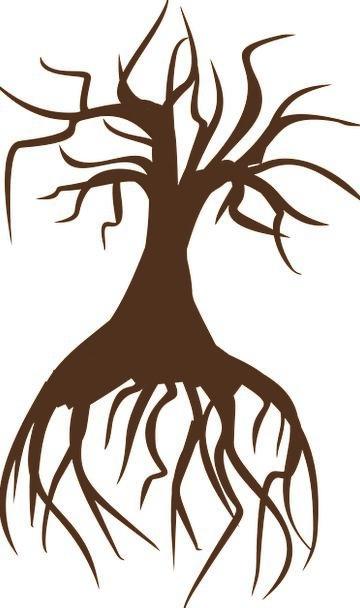 Tree Sapling Landscapes Cane Nature Landscape Scen