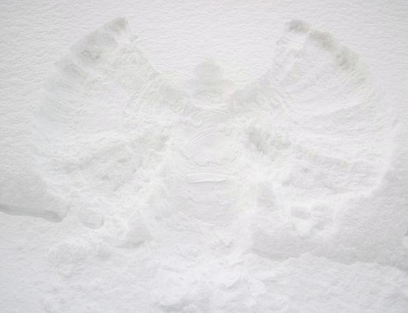 Angel Seraph Cold Emotionless Christmas Fun Amusin
