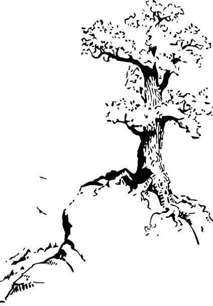 Tree Sapling Perennial Recurrent Black And White B