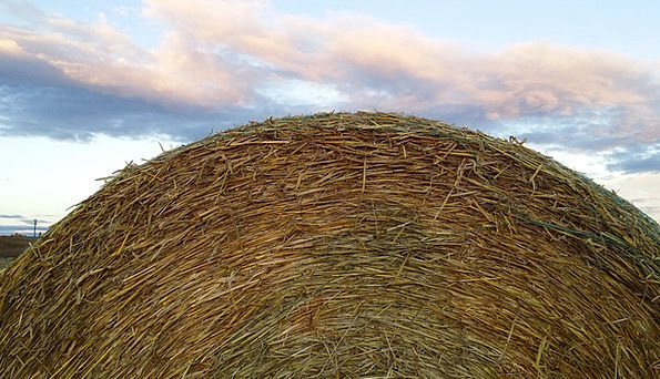 Hay Bale Landscapes Nature Country Republic Rural