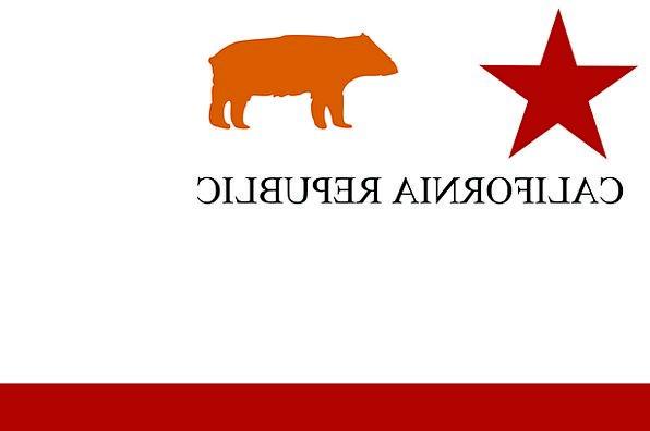 Star Interstellar Standard California Flag Republi