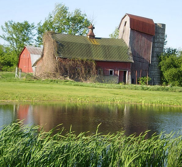 Barn Outbuilding Landscapes Pool Nature Water Aqua