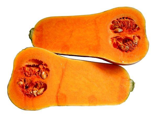 Butternut Drink Food Butternut Squash Pumpkin Edib