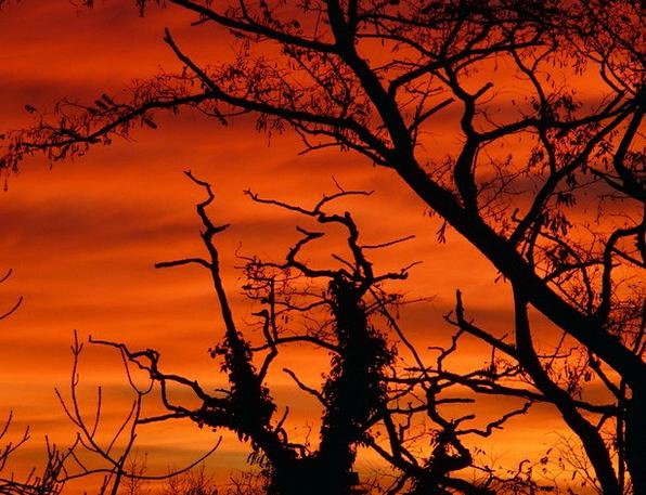 Sun Vacation Sundown Travel Sky Blue Sunset Glow C