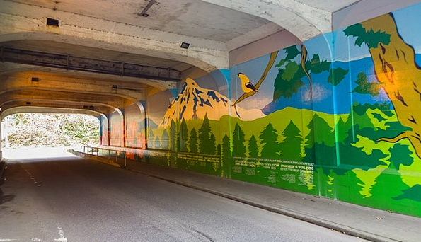 Tunnel Channel Traffic Fresco Transportation Seatt