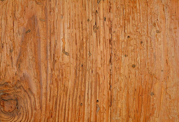 Wood Timber Textures Construction Backgrounds Back