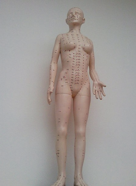 Acupuncture Medical Marionette Health Model Perfec