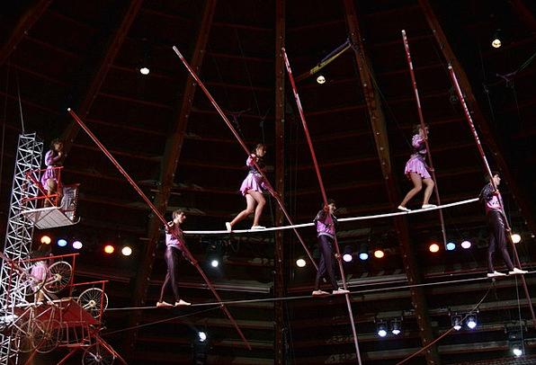 Circus Event Gymnast Acrobats Gymnasts Acrobat Exc