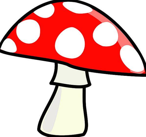Mushroom Burgeon Landscapes Bloodshot Nature Carto