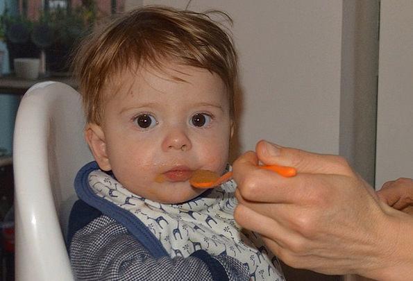 Baby Darling Public Boy Lad People Food Nourishmen