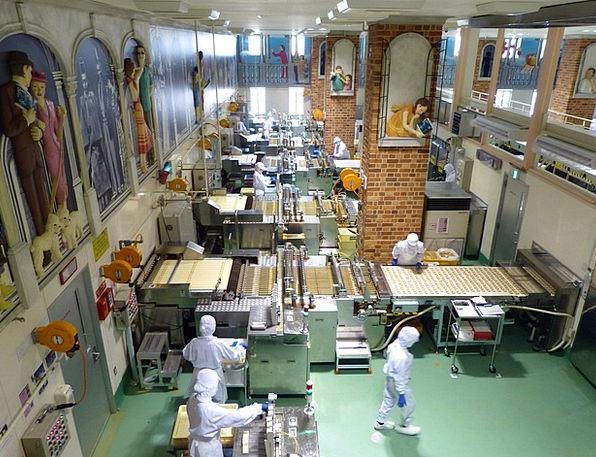 Japan Chocolate Factory Sapporo Cookie Shiroi Koib