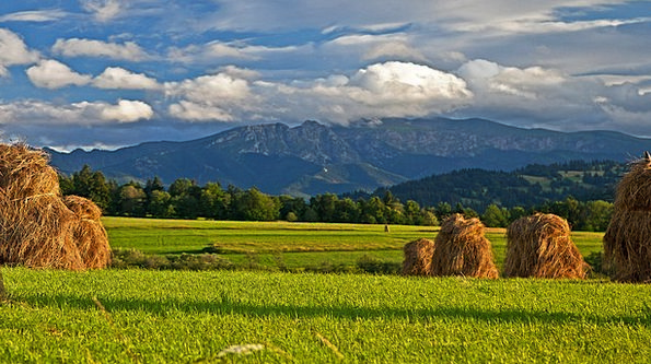 Dried Grass Landscapes Nature Tatry Podhale Sky Mo