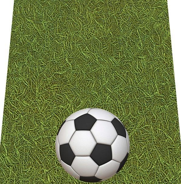 Soccer Sphere Green Lime Ball Champion Grass Lawn