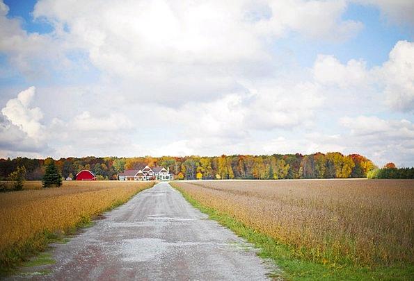 Fall Reduction Traffic Transportation Rural Countr