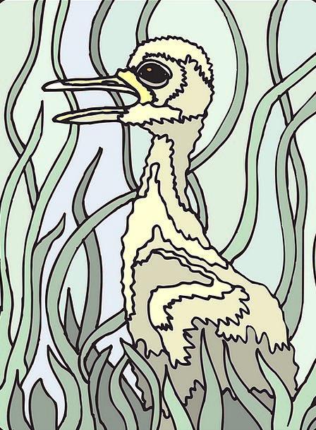 Paint Dye Fowl Grass Lawn Bird Feathers Downs Gosl