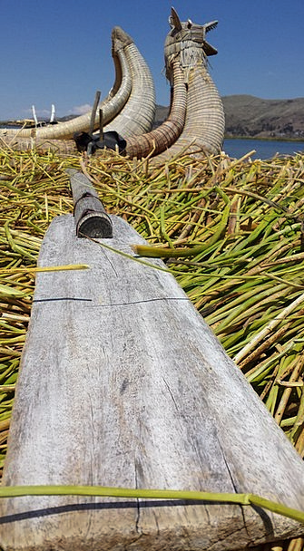 Oars Paddles Canes Boat Ship Reeds Uro Lake Titica