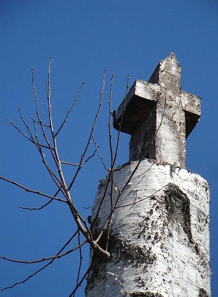 Cross Irritated Cane Christianity Birch