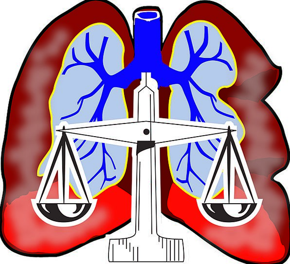 Lungs Drawing Air Midair Diagram Anatomical System