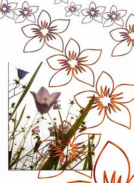 Flowers Plants Textures Contextual Backgrounds Jou