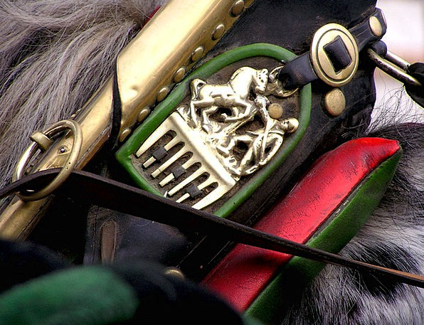 Harness Yoke Mount Vienna Horse