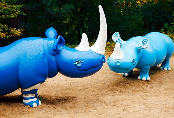 Animal Physical Azure Cute Attractive Blue Park Fu