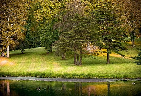 Park Common Landscapes Reduction Nature Autumn Fal