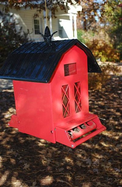 Miraculous Bird House Outbuilding Bird Feeder Barn Pixcove Interior Design Ideas Philsoteloinfo