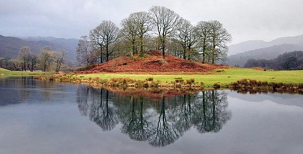 Trees Plants Landscapes Freshwater Nature Cumbria