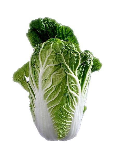 Chinese Cabbage Drink Food Leaf Lettuce Salad Vita
