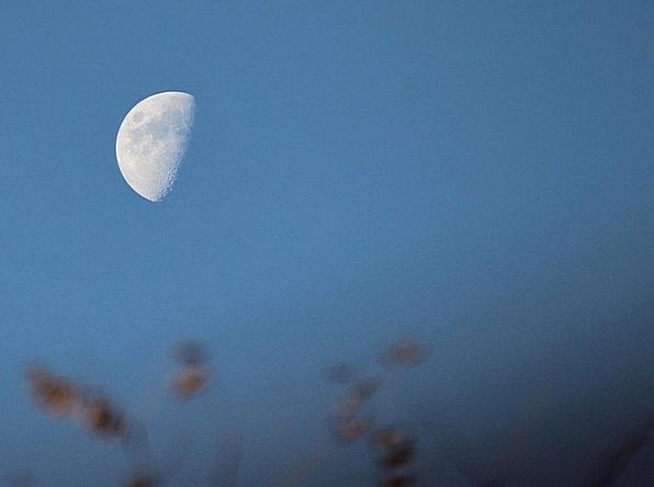 Half Moon Half circle Lunate Luna Lunar Orb Globe