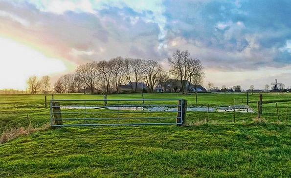 Netherlands Landscapes Farmhouse Nature Rural Coun