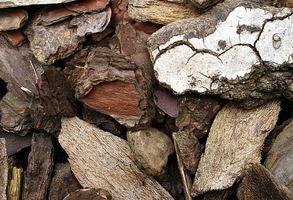 Wood Timber Ground Cover Fir Natural Usual Garden
