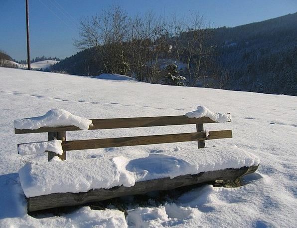 Black Forest Landscapes Set Nature Winter Season B