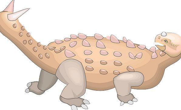 Dinosaur Relic End Ancient Antique Tail Extinct Le