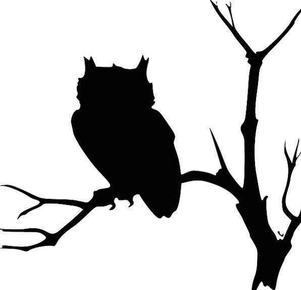 Owl Outlines Black Silhouettes Wildlife Tree Sapli