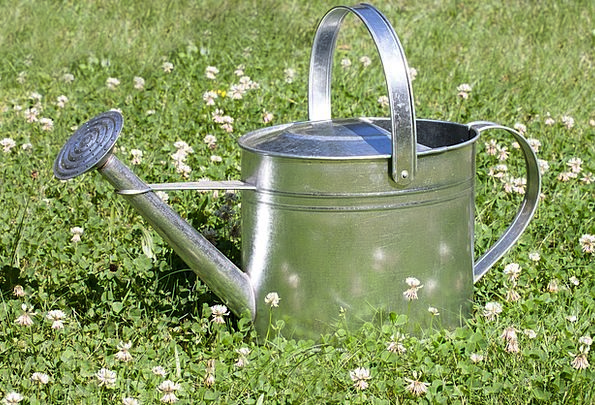 Watering Can Sprayer Vessel Container Sprinkler Kl