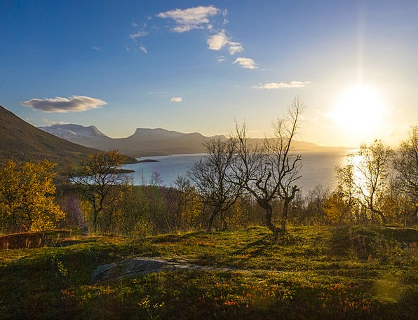 Björkliden Landscapes Scenery Nature Lapland Lands