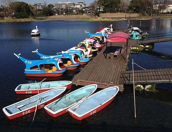 Lake Freshwater Ship Landing Stage Jetty Boat Kuma