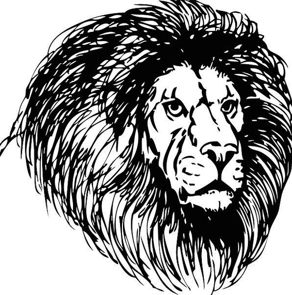 Lion Skull Cat Head Feline Wild Rough Safari Savan