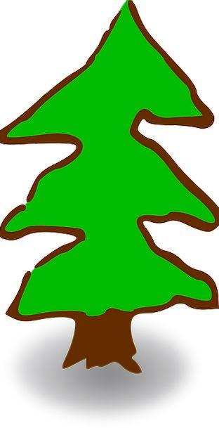 Tree Sapling Lime Pine Long Green Christmas Tree L