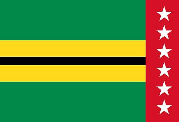 Flag Standard Department Section Santander Columbi