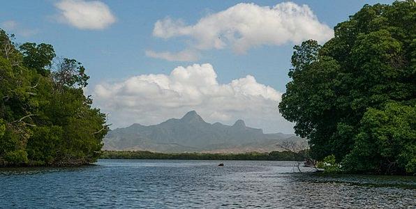La Restinga Inlet Mangroves Lagoon Sunny Hills Kno