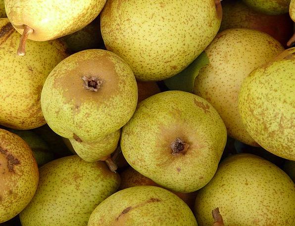Pears Drink Ovaries Food Fruit Ovary Fruits Eat Bo
