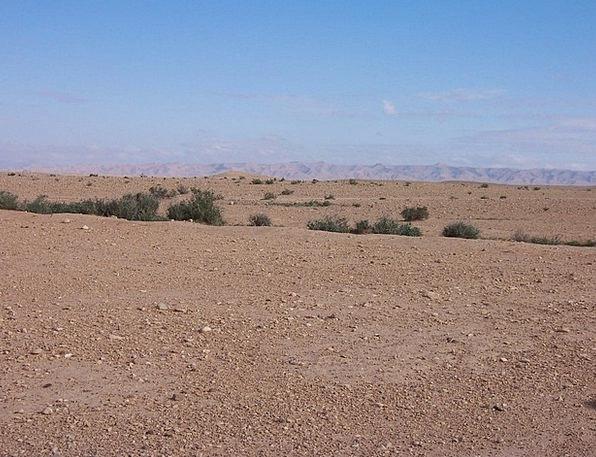 Desert Reward Landscapes Nature Rustic Rural Alger