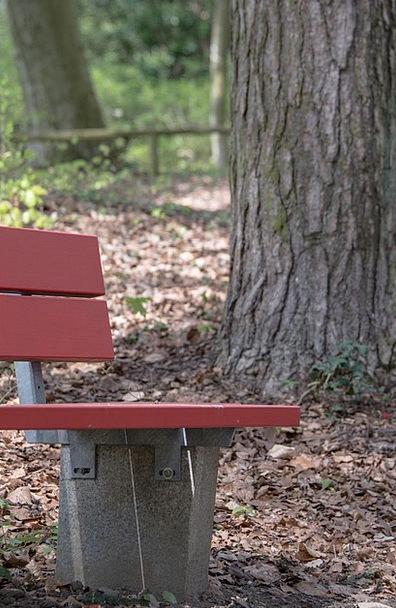 Bank Set Landscapes Nature Bench Seat Park Bench R